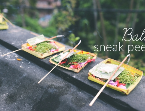 Bali Sneak Peek!