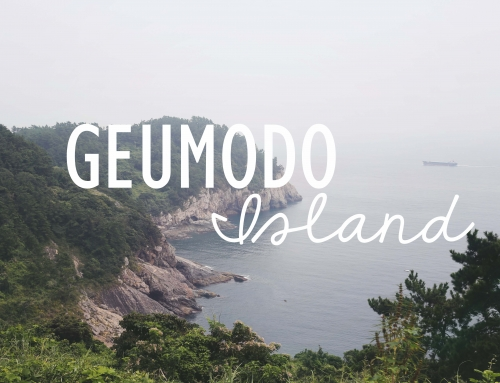 Let's go to… Geumodo Island!