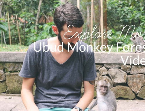 Explore More: Ubud Monkey Forest