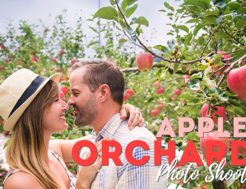 Apple Orchard Photo Shoot