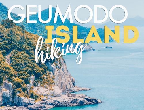 Geumodo Island Guide